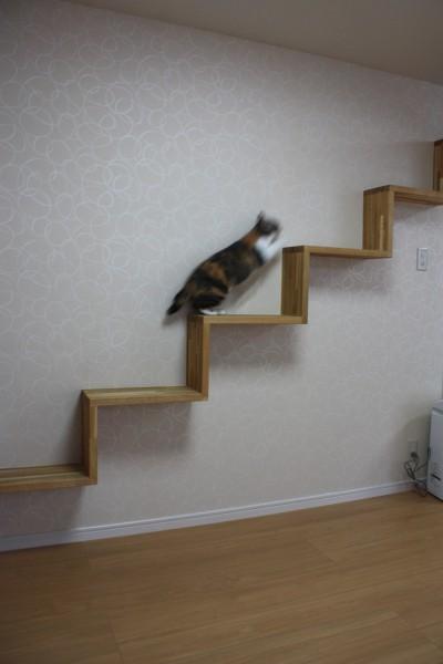 階段コーナー2