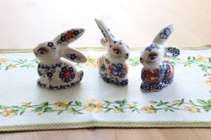 vena_rabbits