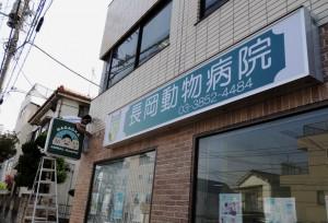 nagaoka-4