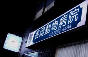 nagaoka-9