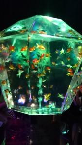 金魚の数も尋常ではありません!