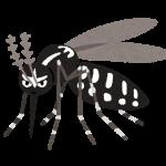 蚊のイメージ