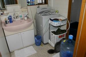 洗面・浴室リフォーム前の洗面室