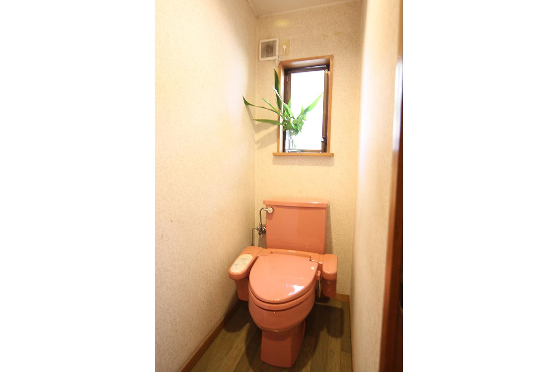 旧式のシャワー付きトイレ